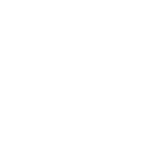 Do You Even Grill Bro Kamado graphic