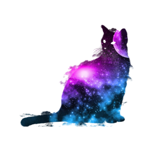 Universe Cat Space Celestial Galaxies Cosmos Gift