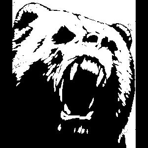 Bär - Design