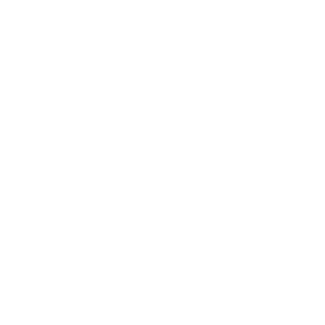 Summer Travel Vibes 2reborn