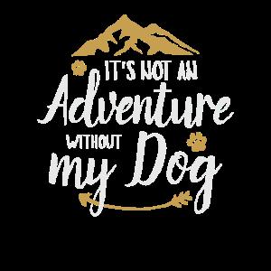 adventure Dog mountains