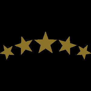 5 Sterne Gold, Star, Sieger Team, Beste, Champion