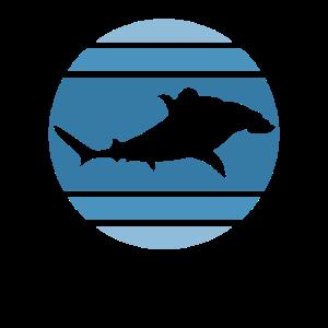 Hai Haifisch