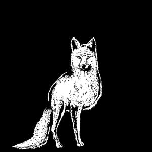 Fuchs Vintage