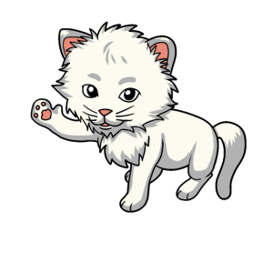 Baby Katze Katzen Kitten Miau süßer Fratz Kinder