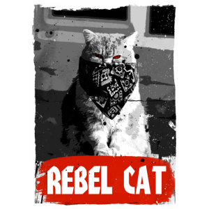 Rebel Cat - Grumpy Cat - Katze