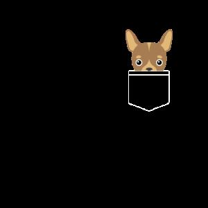 CHIHUAHUA CHICHUAHUA Geschenk Hund Tasche Pocket