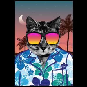 Lustiges Kalifornien-Strand-Katzen-Geschenk Retro Sommer 80s