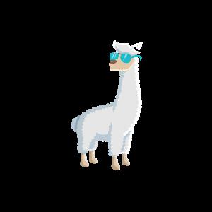 Cooler Alpaka