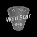 Wild Star XV 1600
