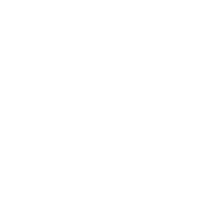 Elefanten Print