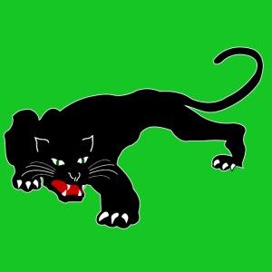 Zwarte panter 2