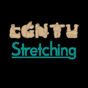 Stretching Dehnen