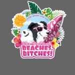 More Dog-Friendly Beaches