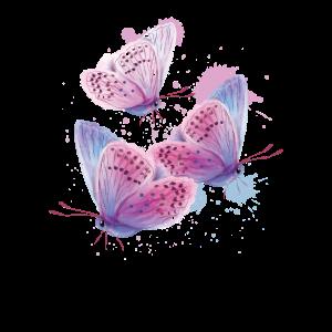 Schmetterling Tier Tierreich