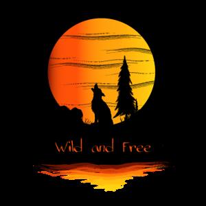 wolf nature sunset adventure freedom wild and free