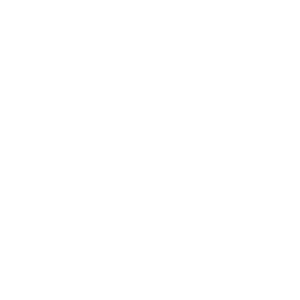 Programmierung Informatik Entwickler Wortspiel