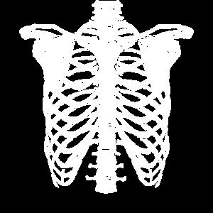 Sekletton Skelett Gerippe Rippen Torso Kostüm