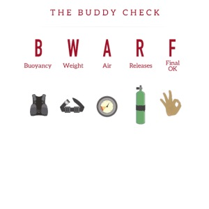 The Buddy Check
