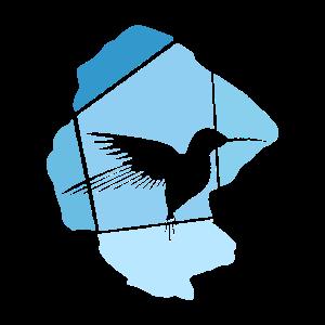 fliegend Flügel Vogel