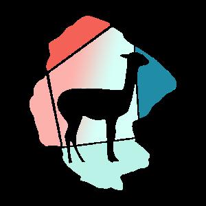 Lama Serengeti