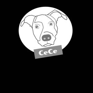 CeCe The Rescue