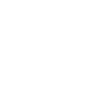 Bratröhre