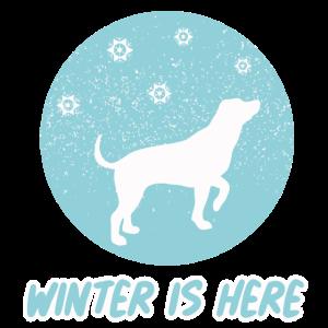 Winter is Here Hund Schneeflocken Damen Herren