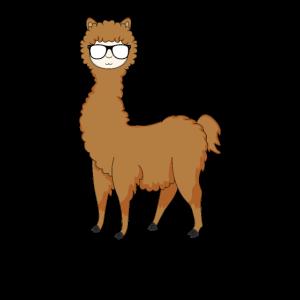 Lama Alpaka Mit Sonnebrille Cooles Cool Lamadesign