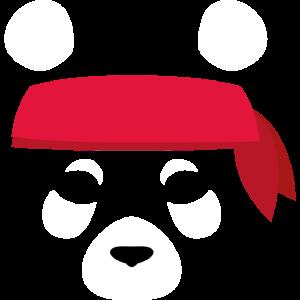 PANDA - Karate, Kung Fu, Tekwando