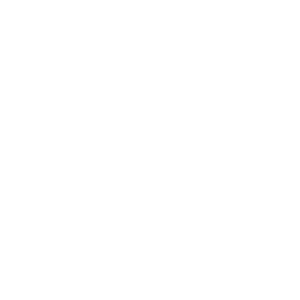 Wolf Stolz Rudel