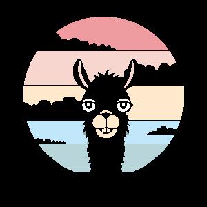 Alpaka Zoo