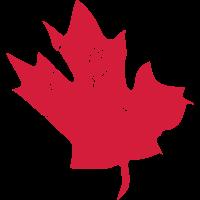 Canadian Maple Leaf- Vintage Look