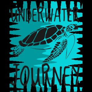 Underwater Journey Turtle