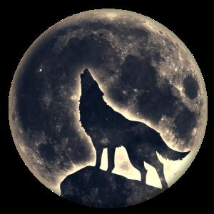 Wolf, Vollmond, Wölfe, Mond, Indianer, Wild, Hund