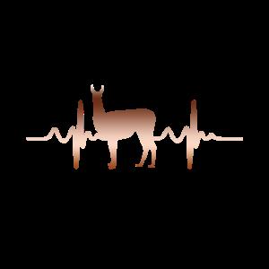 Lama Herzschlag