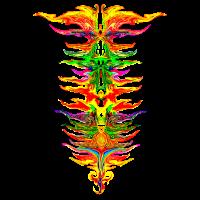 Color your life! Farbe, Chakra, bunt, Evolution
