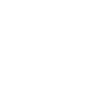 Demo Kasette