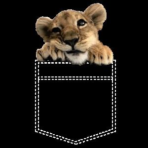 niedliches Löwen Baby in Brusttasche