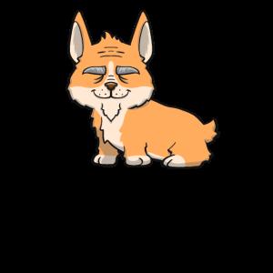 Hund - Corgi