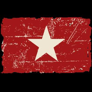 Vietnam Vintage Flag