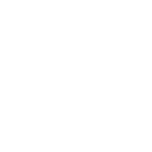 Passion. Results. Success. No. 1