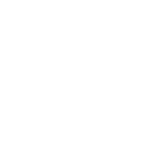 Passion. Results. Success. No. 4