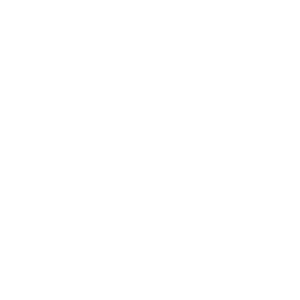 Passion. Results. Success. No. 8