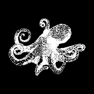 Octopus Tintenfisch Krake Oktopus
