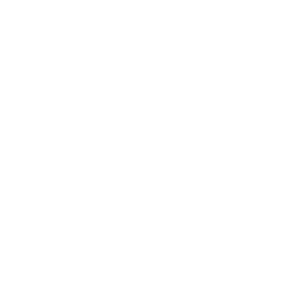 2019 strich