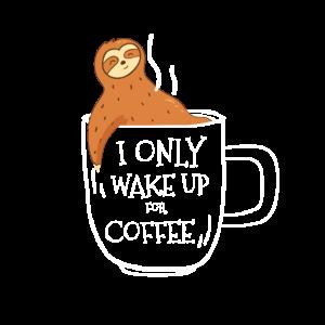 Baby Faultier Kaffee Kaffeetasse