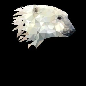 Polar Bär Eisbär Design