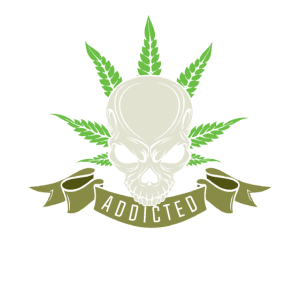 Unkraut Cannabis Marihuana Blatt