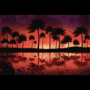 Karibischer Sonnenuntergang | Yolo-Artwork